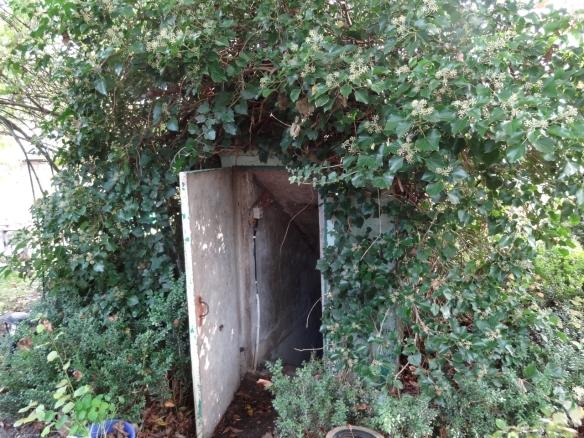 DSC01630_Bunker3_dieGlucke