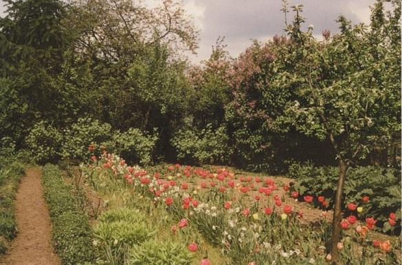 Kleingarten Frühling
