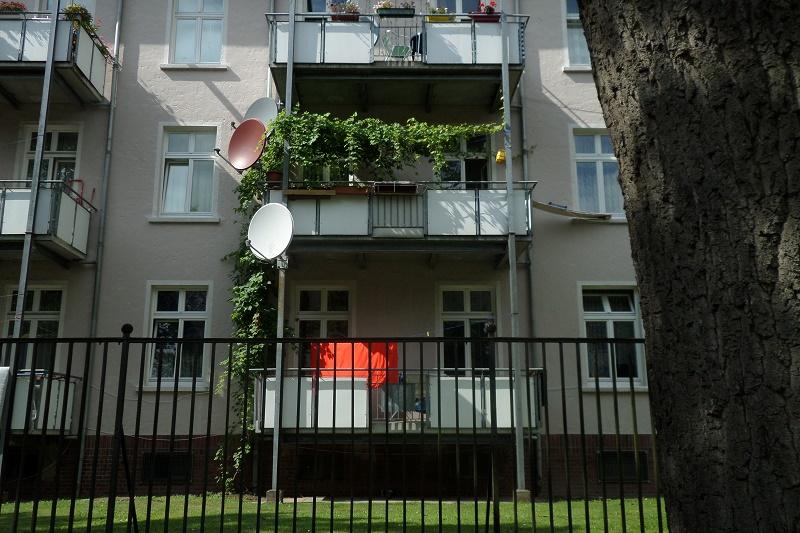 ranke f r den balkon g rtnern in bremen. Black Bedroom Furniture Sets. Home Design Ideas