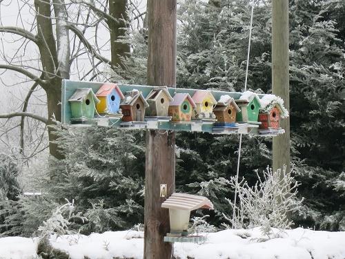 Vogelhäusersiedlung