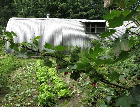 Nissenhütte-Garten